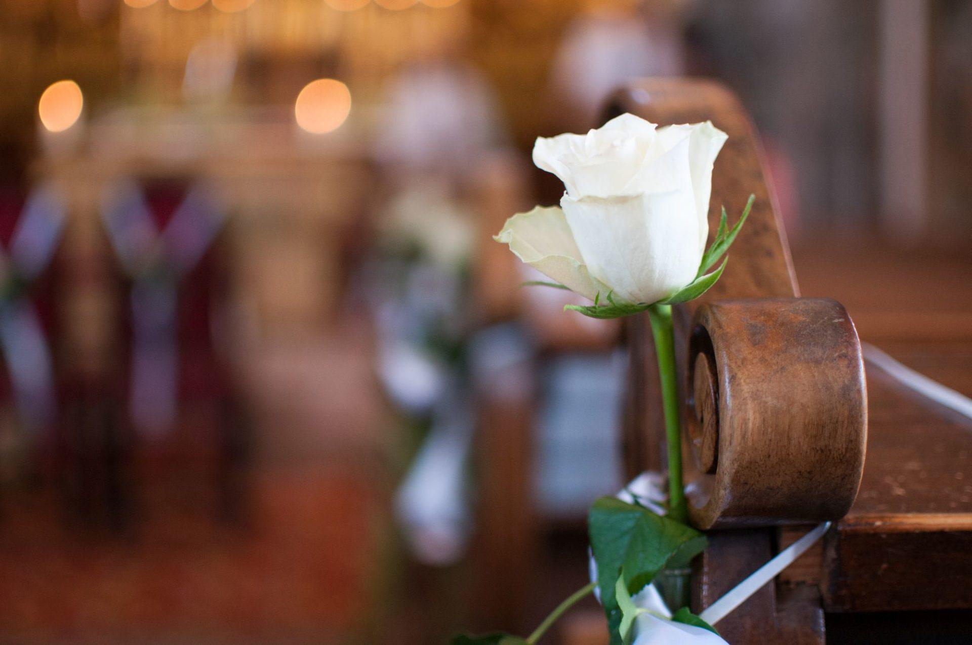 Rose in der Kirche