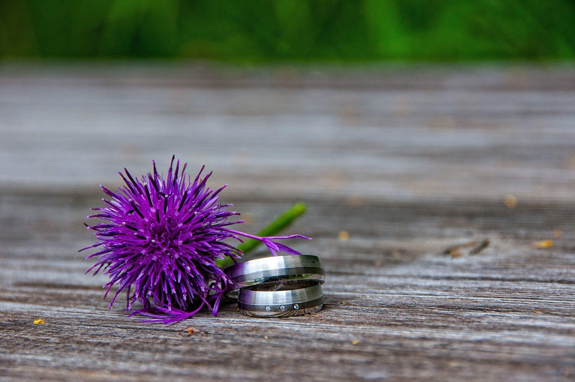 Ringe mit lila Blume